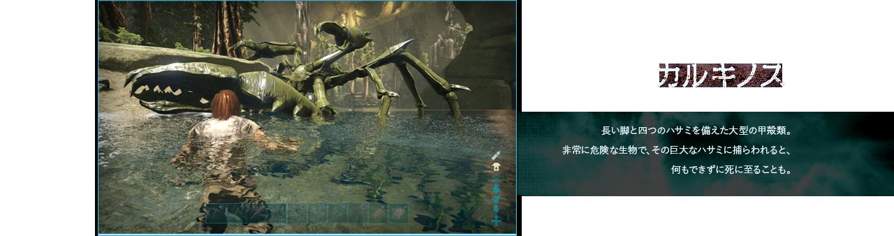 カルキノス 長い脚と四つのハサミを備えた大型の甲殻類。非常に危険な生物で、その巨大なハサミに捕らわれると、何もできずに死に至ることも。