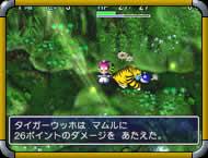 GameImage/天輪の樹海