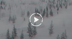 シークエンストレーラー[4K]